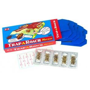 Hoy Hoy Trap 5-pack (Kakkerlakken)