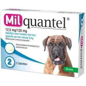 Milquantel 12,5 mg/125 mg Hond Groot 2 tabl. 5-75kg