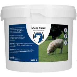 Sheep Parex